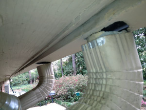 Typical damaged found when inspecting downspouts
